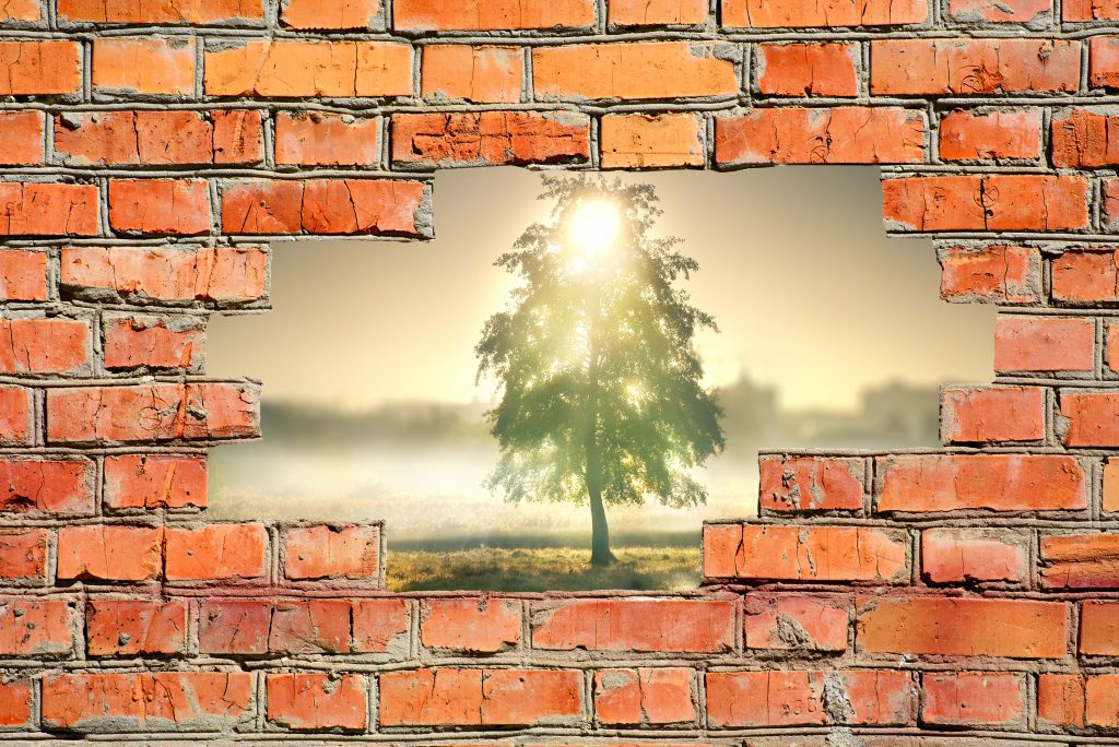 Brick wall with hole signifying vulnerability